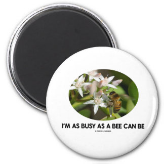 I m As Busy As A Bee Can Be Bee On White Flower Magnets