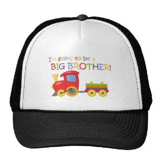 I m going to be a big brother hat