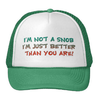 I m Not a Snob Insulting Humor Mesh Hat
