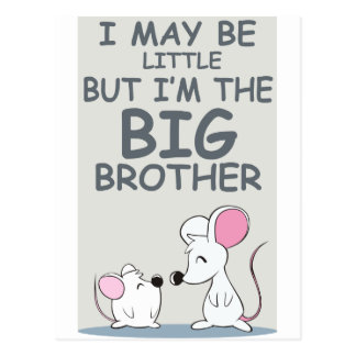 I may be little but I am the Big Brother Postcard