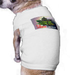 I may LOOK Mexican, but I'm Canadian born and bred Pet Shirt