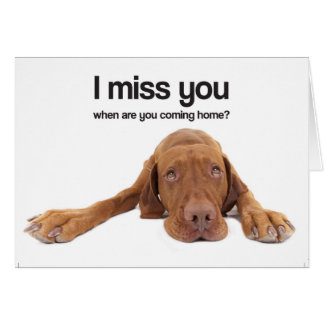 I Miss You (Vizsla) Card