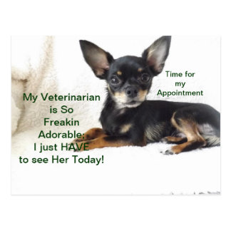 I must see my VET today  Appointment Card Postcard