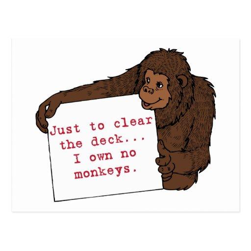 I Own No Monkeys Postcard