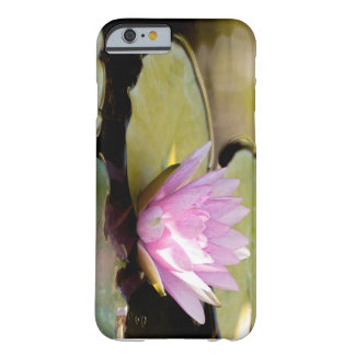 I-Phone 6/6s Barely There case, Water garden Barely There iPhone 6 Case