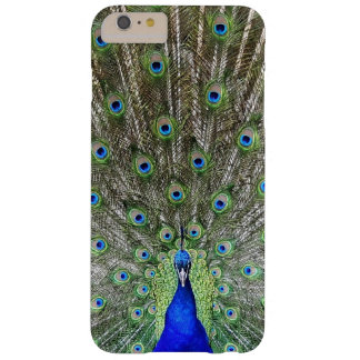 "i-Phone 6 Case "" Peacock"""