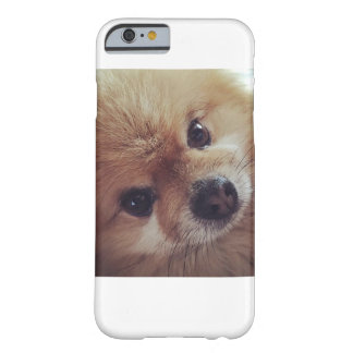i-phone 6 case with pomeranian