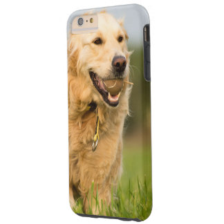 I phone S6 Protective Case with Golden Retriever