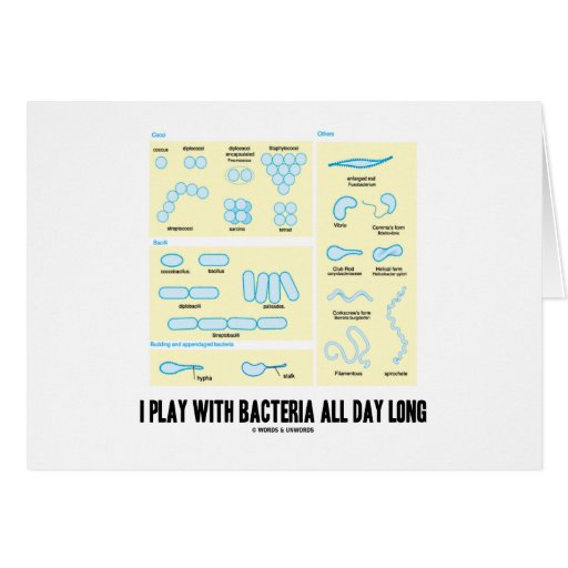 I Play With Bacteria All Day Long (Morphology) Greeting Card