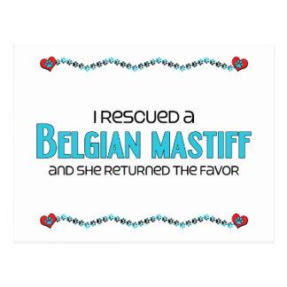 I Rescued a Belgian Mastiff (Female Dog) Postcard