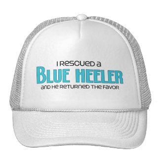 I Rescued a Blue Heeler (Male Dog) Mesh Hat