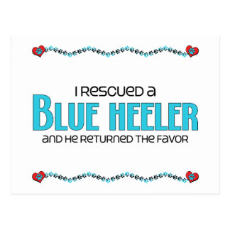 I Rescued a Blue Heeler (Male Dog) Postcard