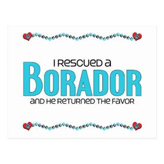 I Rescued a Borador (Male) Dog Adoption Design Postcards