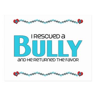 I Rescued a Bully Breed (Male Dog) Postcard