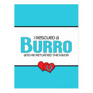 I Rescued a Burro (Male Burro) Postcard