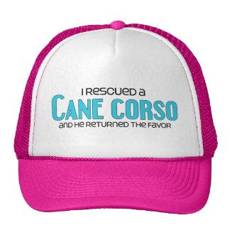 I Rescued a Cane Corso (Male Dog) Cap