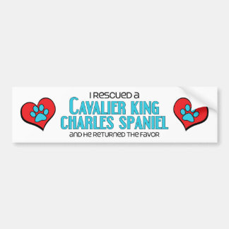 I Rescued a Cavalier King Charles Spaniel (Male) Car Bumper Sticker