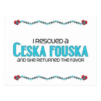 I Rescued a Ceska Fouska (Female Dog) Postcard