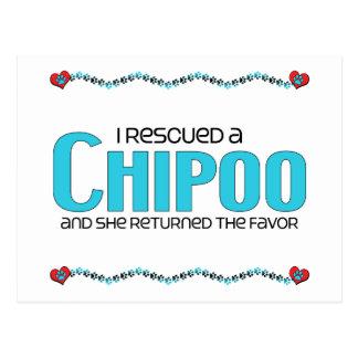 I Rescued a Chipoo (Female) Dog Adoption Design Postcard