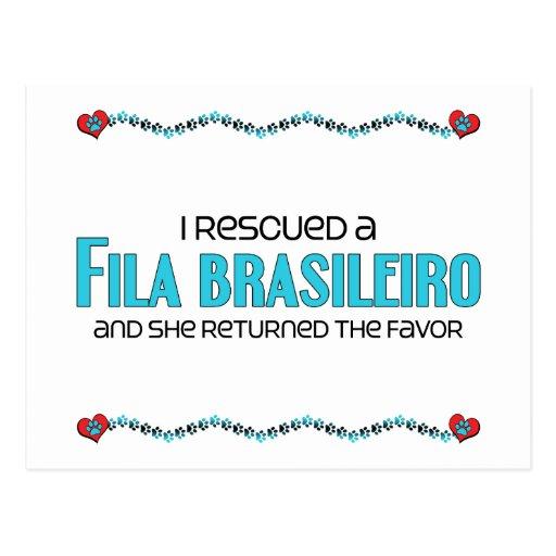 I Rescued a Fila Brasileiro (Female Dog) Post Cards
