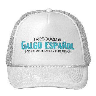 I Rescued a Galgo Español (Male Dog) Hats