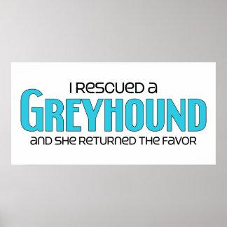 I Rescued a Greyhound Female Dog Print