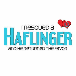 I Rescued a Haflinger (Male Horse) Photo Sculpture Magnet