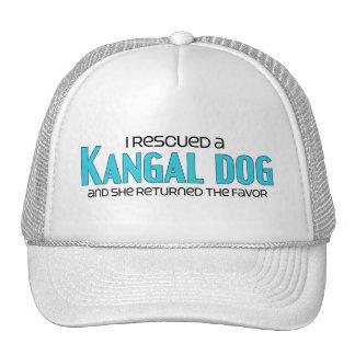 I Rescued a Kangal Dog (Female Dog) Cap
