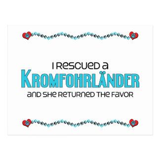 I Rescued a Kromfohrländer (Female Dog) Postcard