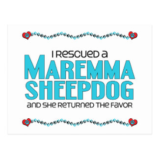 I Rescued a Maremma Sheepdog (Female Dog) Postcard