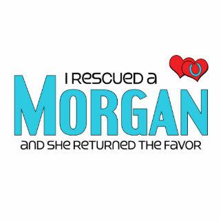 I Rescued a Morgan Female Horse Photo Cutouts