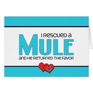 I Rescued a Mule (Male Mule) Note Card