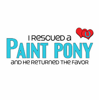 I Rescued a Paint Pony Male Pony Cut Out