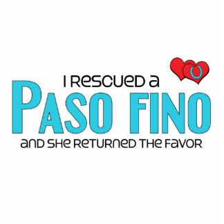 I Rescued a Paso Fino Female Horse Cut Out