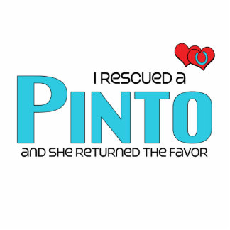 I Rescued a Pinto Female Horse Acrylic Cut Outs
