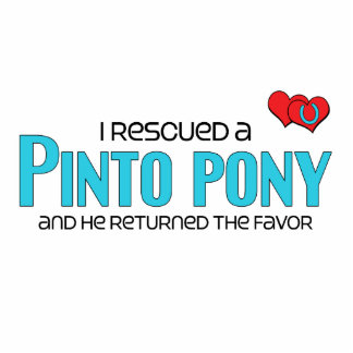 I Rescued a Pinto Pony Male Pony Photo Cut Outs