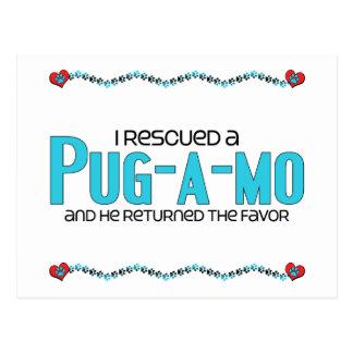I Rescued a Pug-A-Mo (Male) Dog Adoption Design Postcard