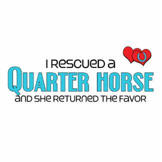 I Rescued a Quarter Horse Female Horse Photo Sculpture