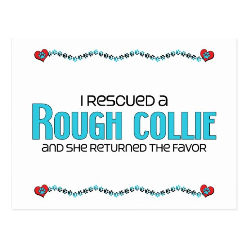 I Rescued a Rough Collie (Female Dog) Post Cards