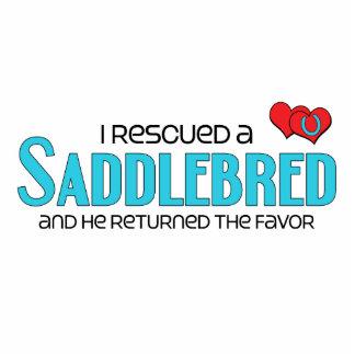 I Rescued a Saddlebred Male Horse Photo Cutouts
