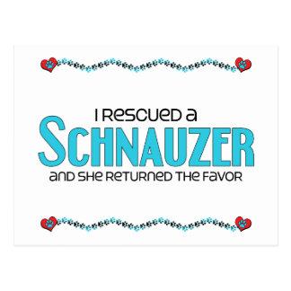 I Rescued a Schnauzer (Female Dog) Postcard