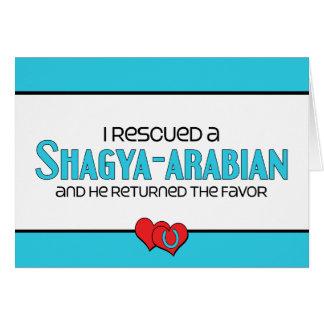 I Rescued a Shagya-Arabian (Male Horse) Note Card