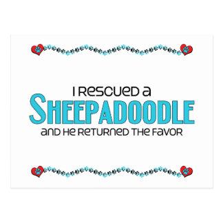 I Rescued a Sheepadoodle (Male) Dog Adoption Postcards