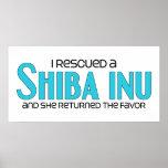 I Rescued a Shiba Inu (Female Dog)