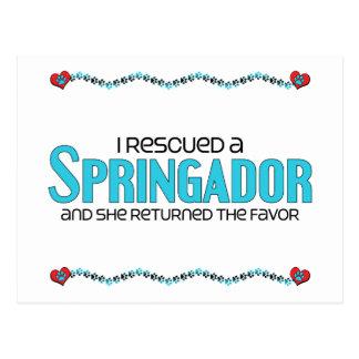 I Rescued a Springador (Female) Dog Adoption Postcard
