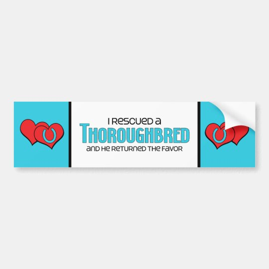 I Rescued a Thoroughbred (Male Horse) Bumper Sticker