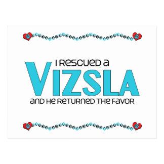 I Rescued a Vizsla (Male Dog) Postcard