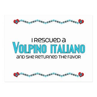 I Rescued a Volpino Italiano (Female Dog) Postcard