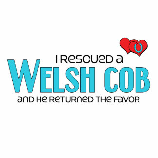 I Rescued a Welsh Cob Male Pony Cut Out
