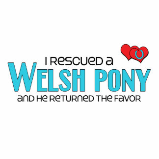 I Rescued a Welsh Pony Male Pony Photo Sculptures